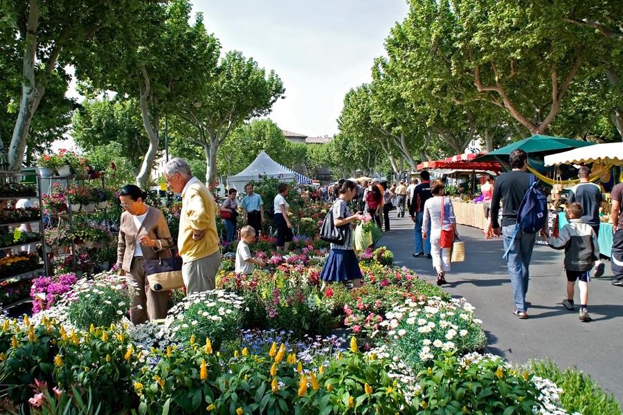 Carpentras Provence rentals