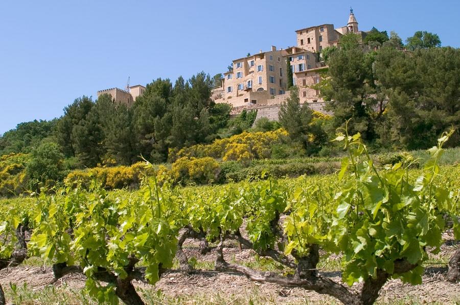 Crillon-le-Brave Provence rentals