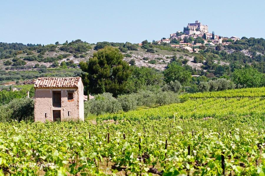Le Barroux Provence rentals