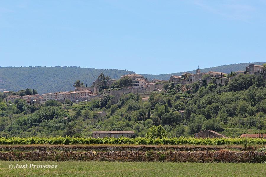 Ménerbes Provence rentals
