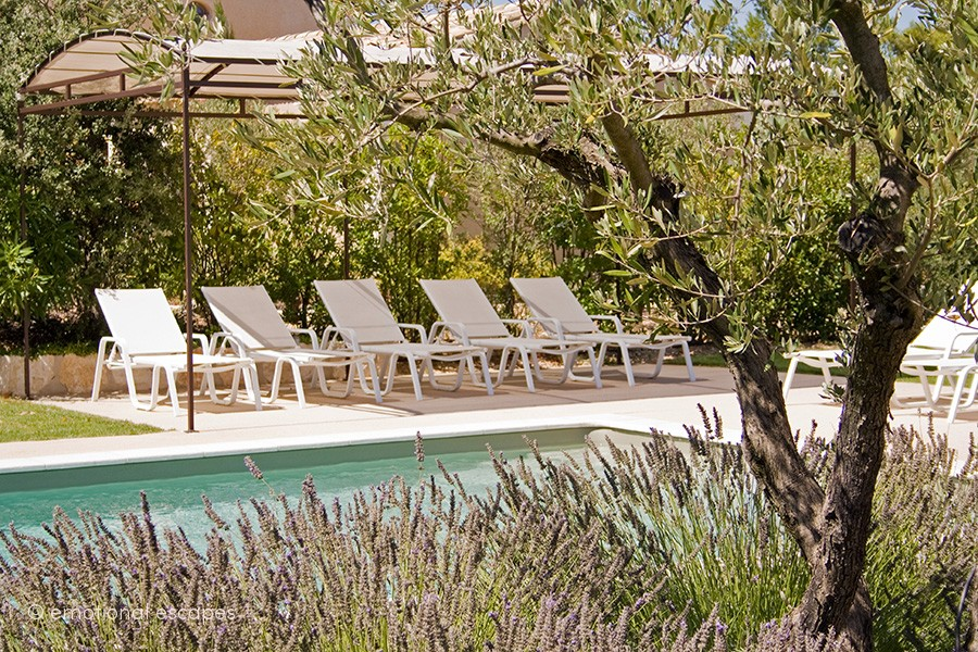 villa rentals south of france