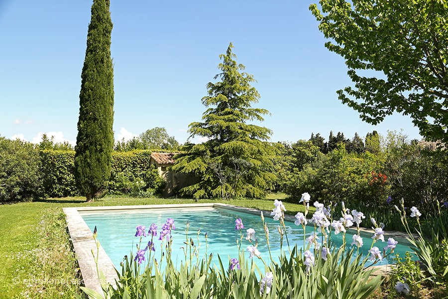 luxury holiday south of france